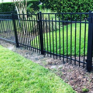 Backyard Iron Fencing for Dogs